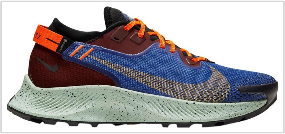 Nike_Pegasus_Trail_2_GoreTex